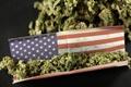 캐나다 마리화나 합법화되자 환호성 지른 구매자들