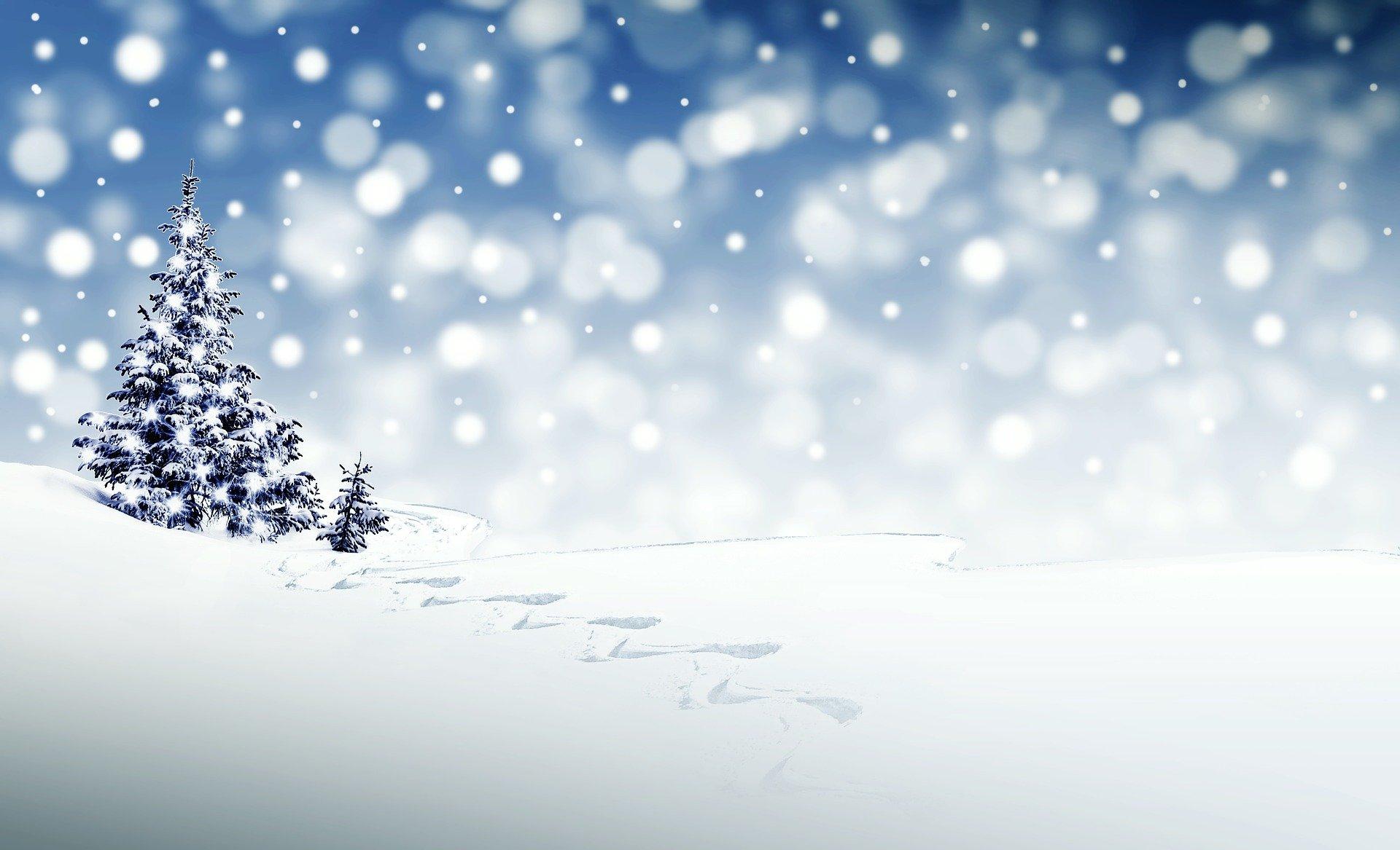 [WEEKLY RASSI] 스윙기어+1054% 수익실현 - 12월 2째주 라씨 AI매매성과